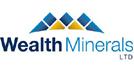 wealth-logo